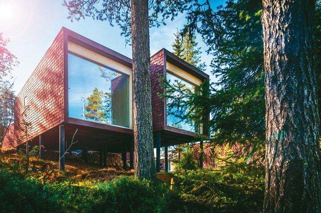 被森林環抱的極圈玻璃樹屋,與拉普蘭自然零距離。 圖/各業者提供