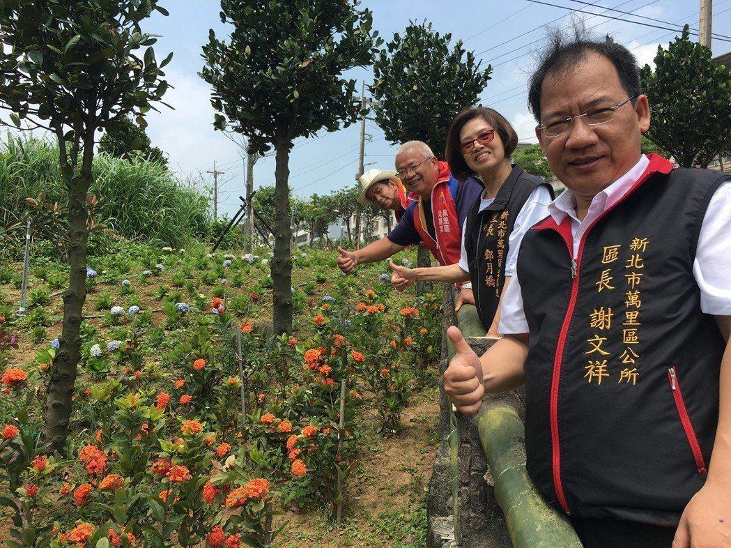 現在到了百花齊放的季節,萬里區北基社區道路沿途開滿了繡球、仙丹還有大紅花,里長與...