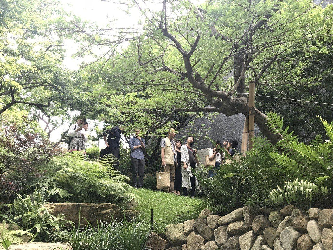 半畝塘「若山II」舉行慶豐收茶會。記者李珣瑛/攝影