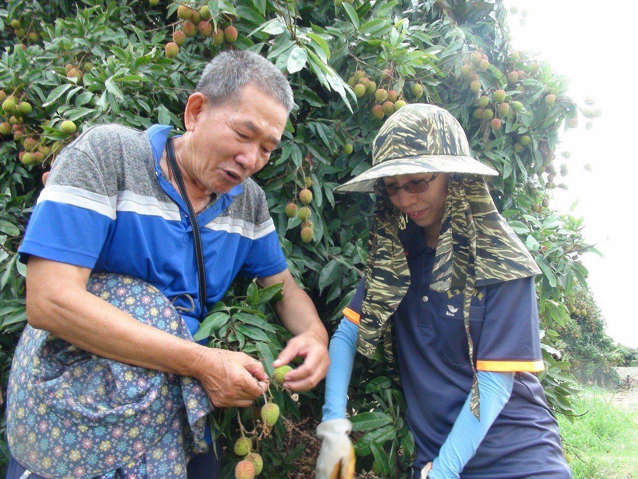 黃雯妃(右)向老師傅請教採玉荷包技巧。記者謝梅芬/攝影