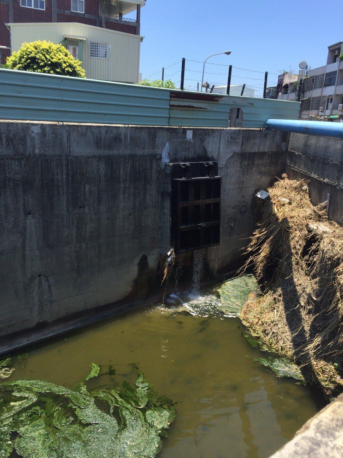台南仁德太乙工業區大排一甲橋下雜物堆積,環保局勘查後發現是天氣炎熱大量藻類繁殖,...