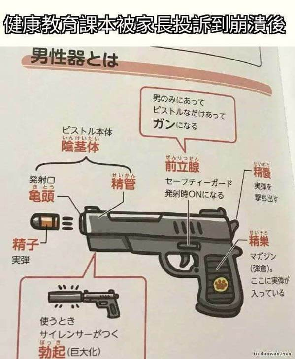 日本健教課本把男生殖器畫成手槍。取自臉書