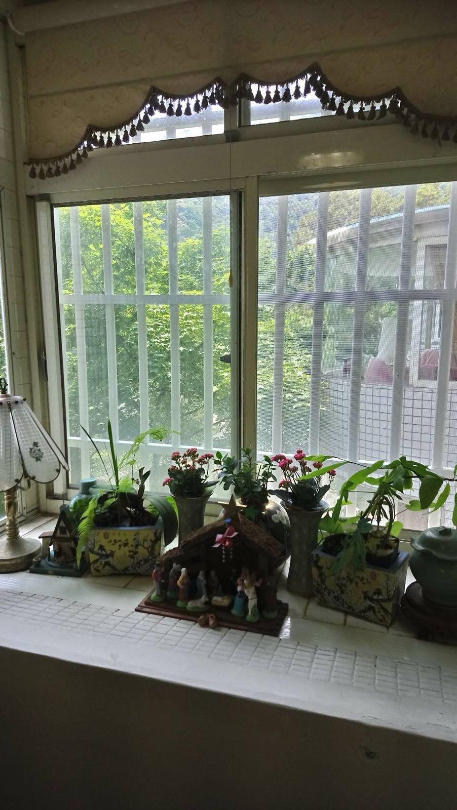 吳雪芬家中珍藏古董多到拿去種花。圖/粘嫦鈺提供