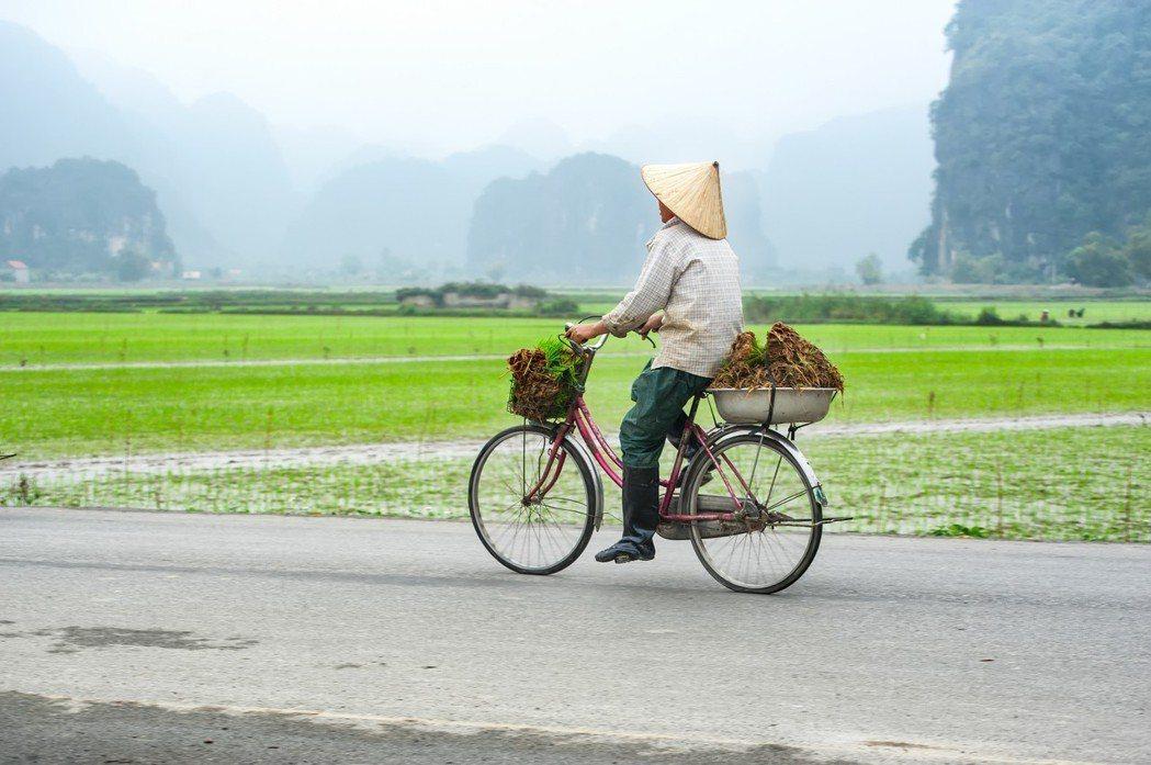 越南一景。圖/Ingimage