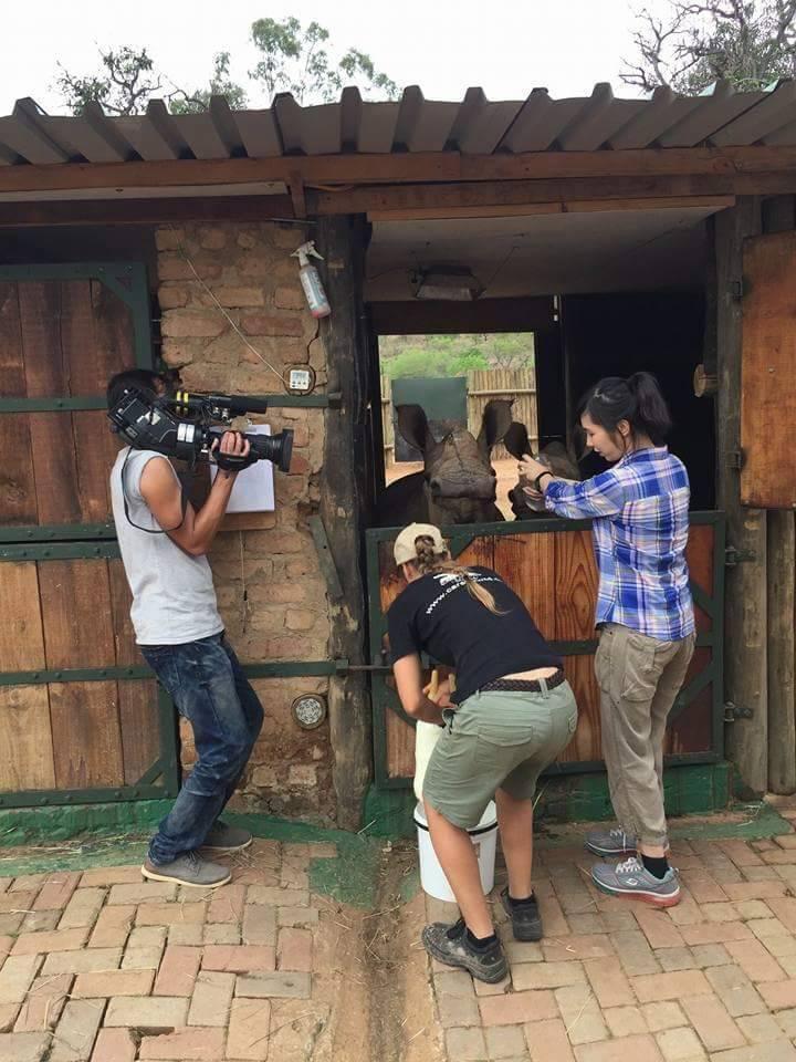遠赴南非拍攝犀牛。圖/東森提供
