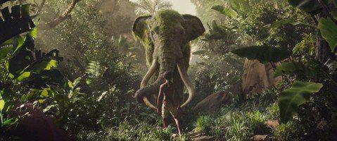 改編自魯德亞卜林的名著小說「森林王子:毛克利的叢林故事集」,並且用最新的動作捕捉攝影技術結合真人的演出,導演安迪席克斯將新片「毛克利」呈現出驚人的現實與特效結合的視覺效果,在今天(5/22)凌晨發佈...