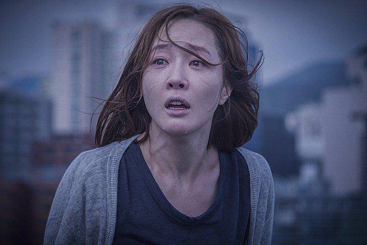 嚴智苑在《消失的女人》與孔曉振大飆演技。圖/華聯國際提供