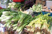素食竟增中風風險?18年近5萬人研究顯示有好有壞
