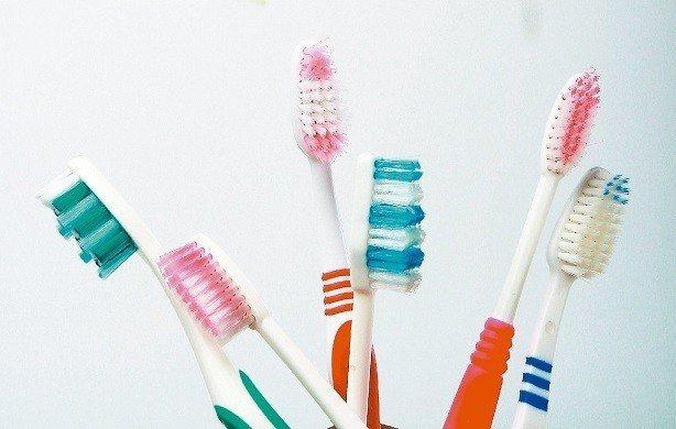 牙刷示意圖。報系資料照