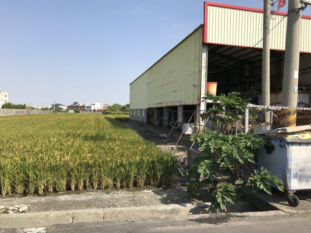 溪湖鎮儀彰企業公司(右)位在農業區,是政府已列刪輔導20年的老廠,環保局憂心當地...