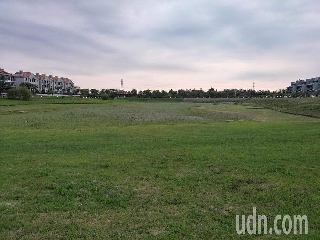 乾旱嚴重,南科陽光電城滯洪池乾涸成草原。記者謝進盛/攝影