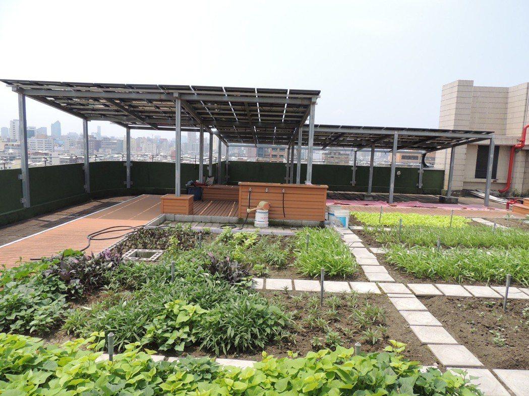 屋頂綠化可以減少屋頂的受熱。 圖/高雄市工務局提供