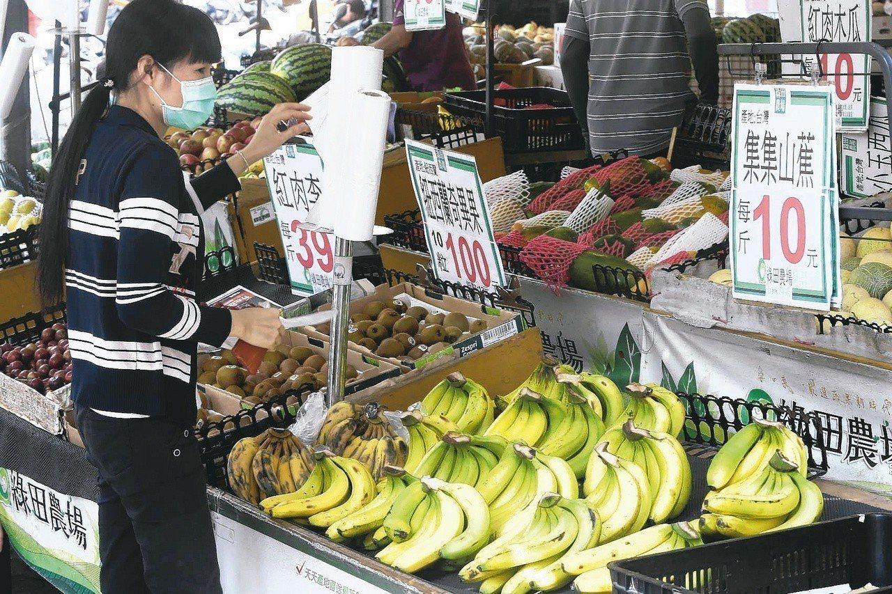 近期鳳梨量多價跌價格僅去年的一半,香蕉同樣悽慘,蕉農血本無歸。報系資料照 記者黃...