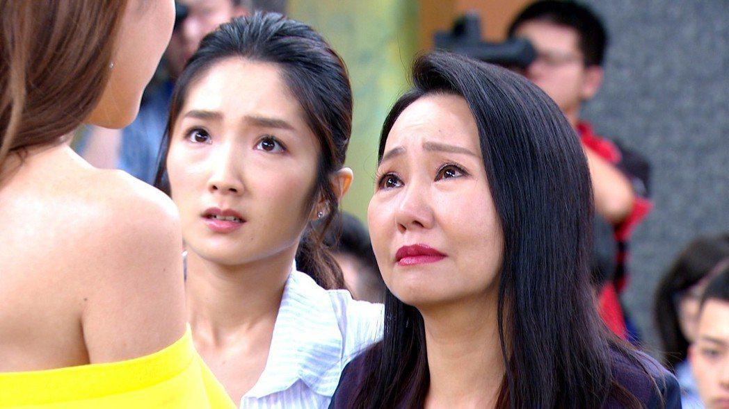 呂雪鳳(右)在戲中罵人很溜。圖/三立提供