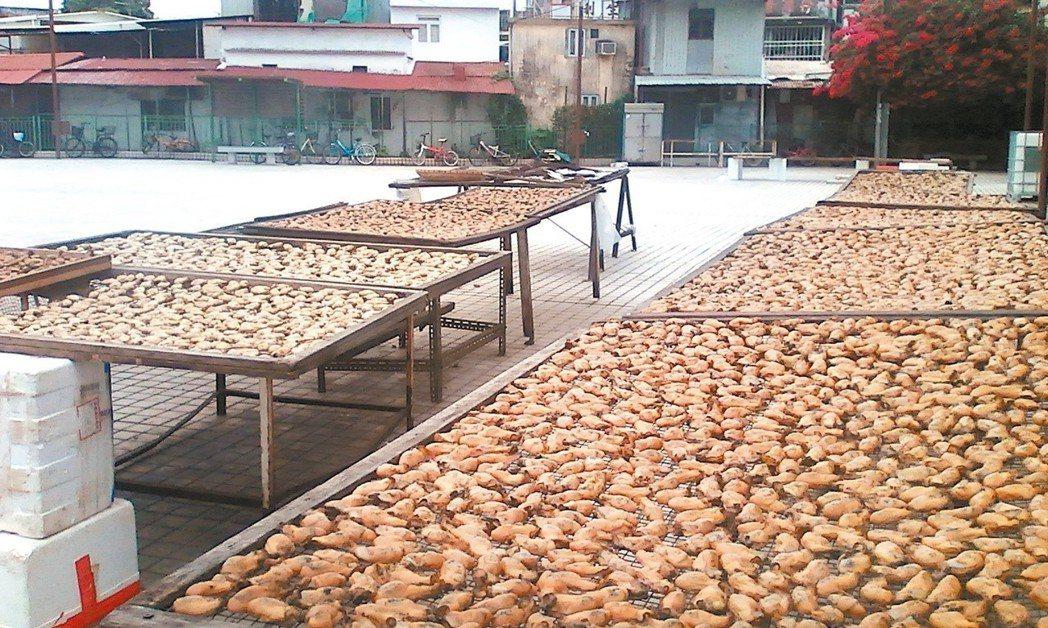 流浮山盛產牡蠣,常見曬牡蠣。