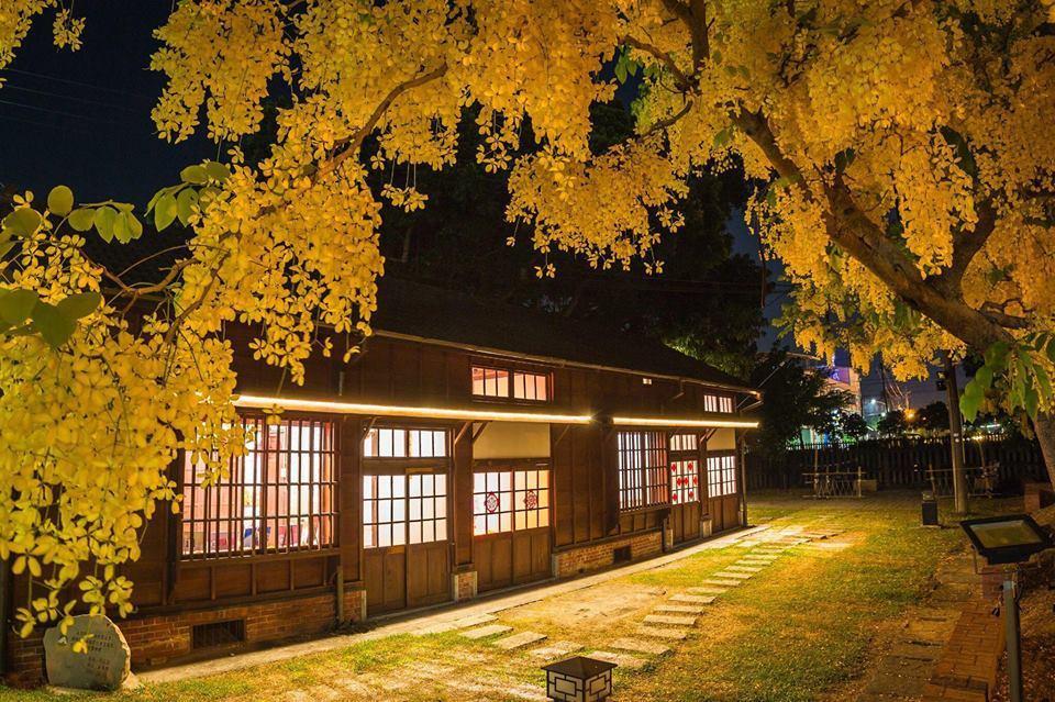 大林鎮公所點燈到10點提供賞花。圖/林約提供