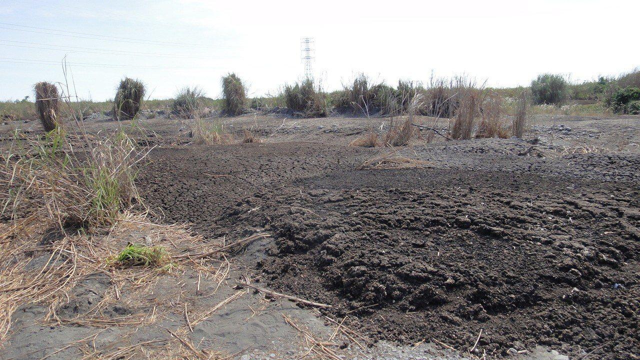 屏東縣林邊溪上游處發現遭隨意傾倒的畜產糞便。記者蔣繼平/攝影