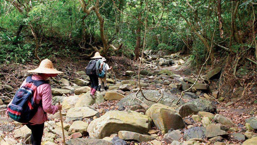 追隨獵人溯行欖仁溪,探索熱帶海岸林與半島溪流特有生態。攝影‧楊為仁