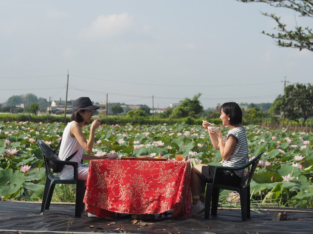 蓮田上的早餐,是白河最新的食農體驗。 朱家瑩/攝影