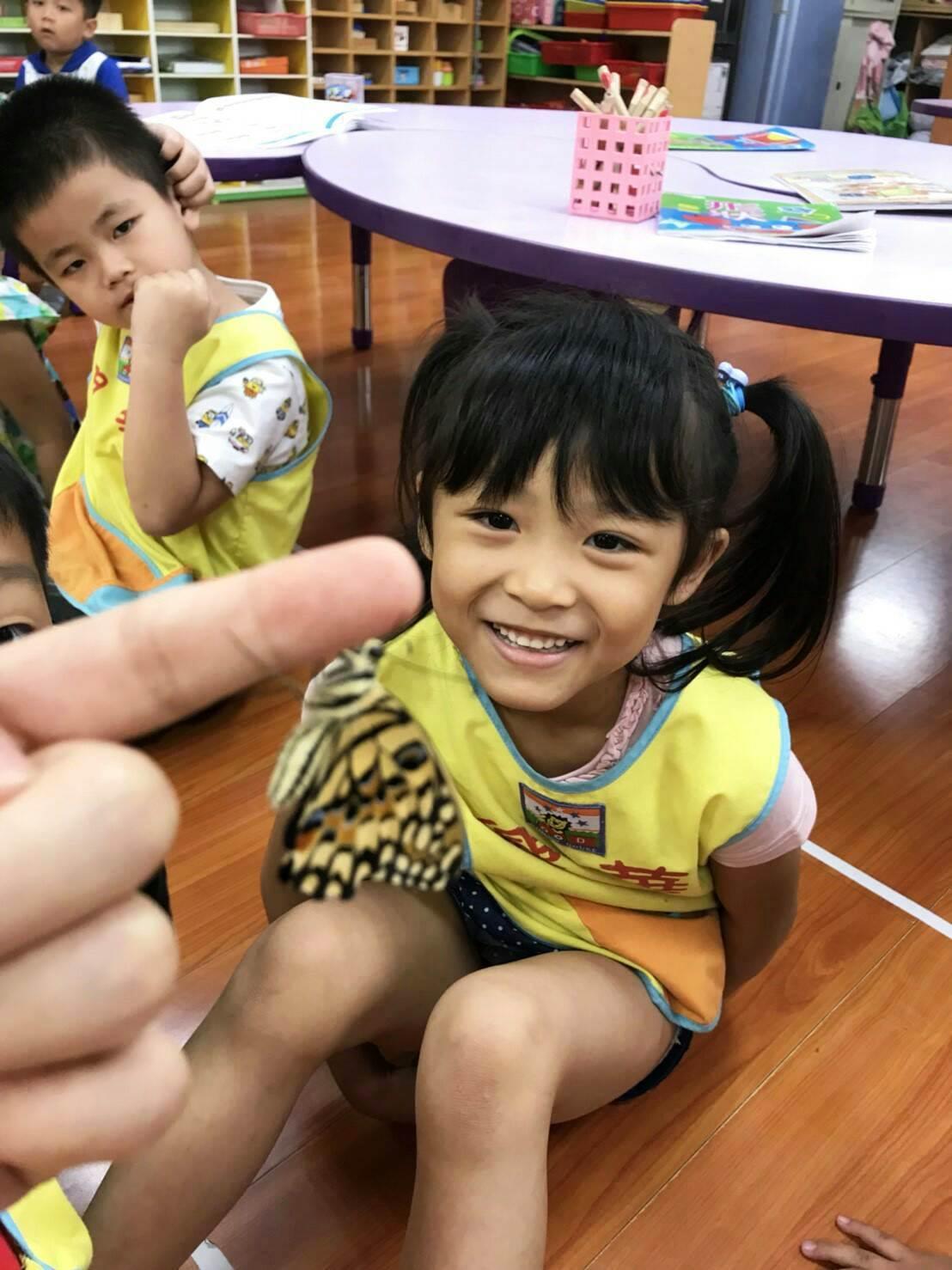 興華國小附幼課程中讓學生近距離觀察蝴蝶。圖/興華國小提供