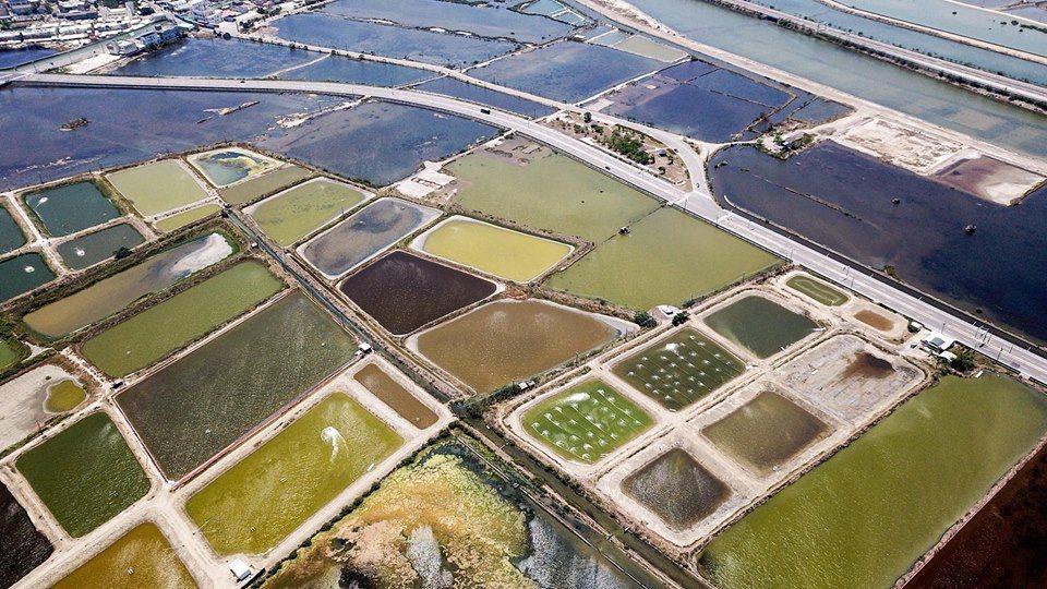 台南七股漁塭區空拍有如調色盤。圖/綠盈牧場提供