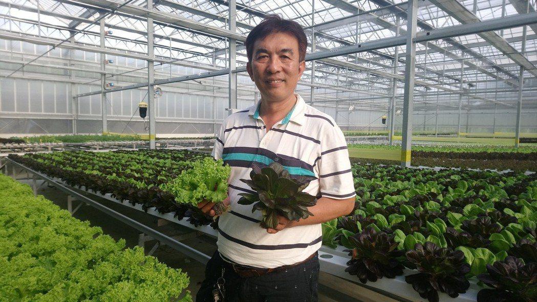 曾明進 透過高科技溫室種植高價值農作。記者卜敏正/攝影