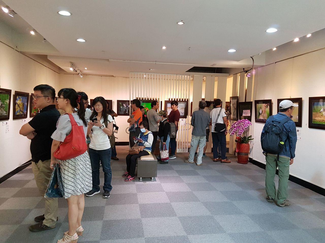 由全台愛好「拍鳥」人士成立的「拍鳥俱樂部」,在台南新化楊逵文學館舉行作品聯展。圖...