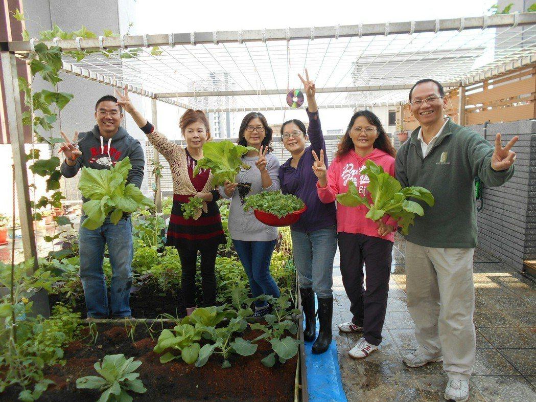 陸江新建築 社區屋頂農場讓住戶體驗種植無毒蔬果的樂趣。 新北環保局/提供。