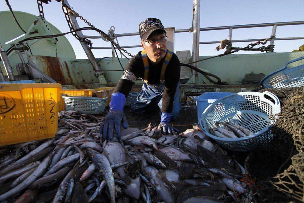 福島漁民們說他們的魚沒人要,攝於2013年8月26日。 圖/美聯社
