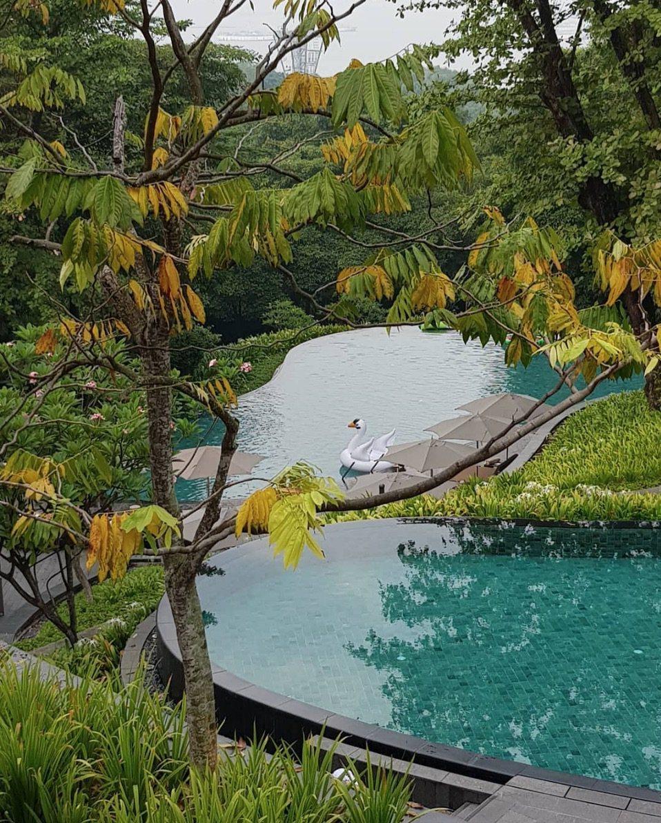嘉佩樂酒店庭園。酒店推特