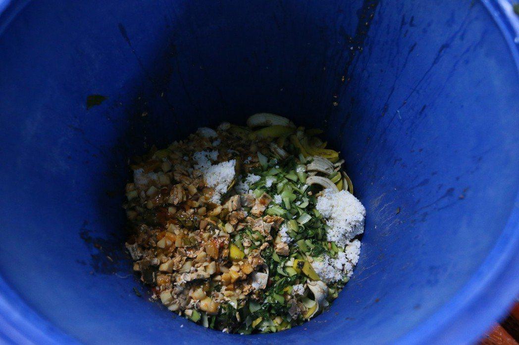 吃不完的營養午餐變成一桶桶廚餘。 記者林伯東/攝影