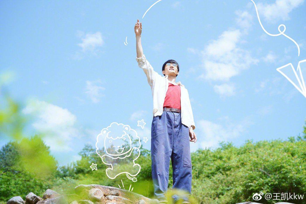 王凱。圖/擷自微博