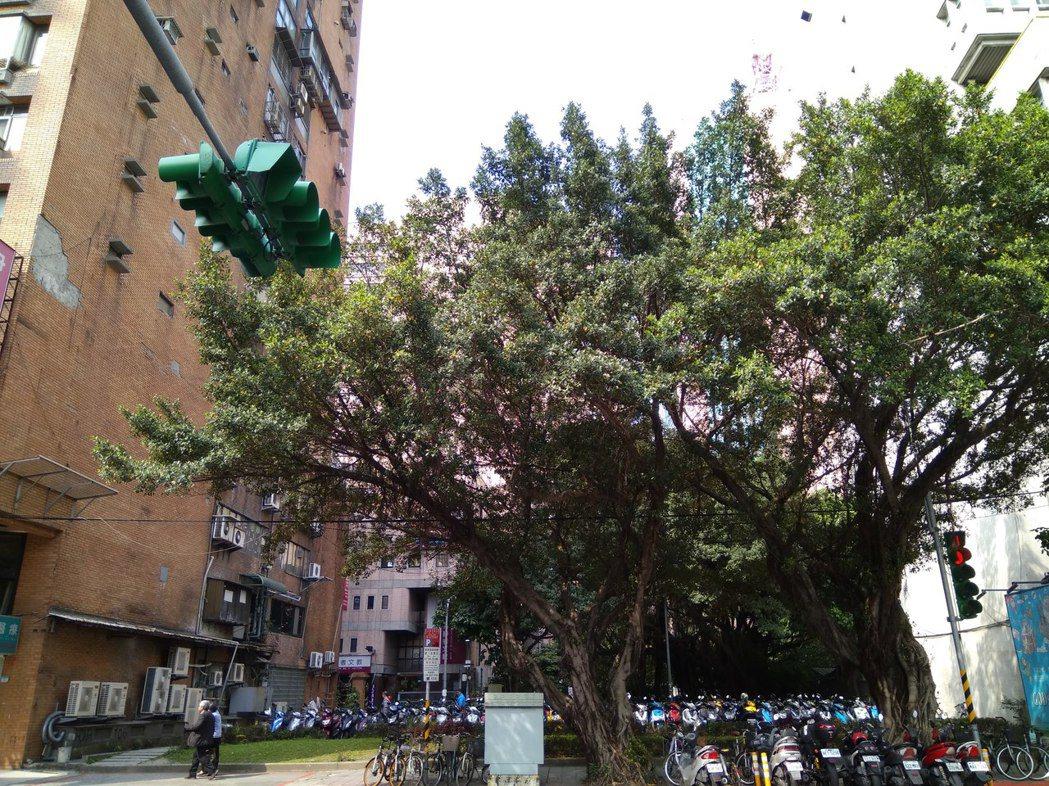 台北市議會舊址旁521坪商四地上權公開標售 圖/第一太平戴維斯提供