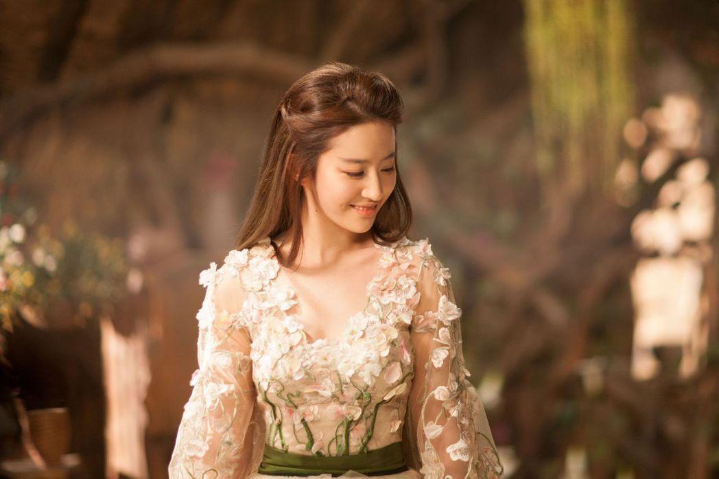 劉亦菲清新脫俗的外貌享有高人氣。圖/向洋提供
