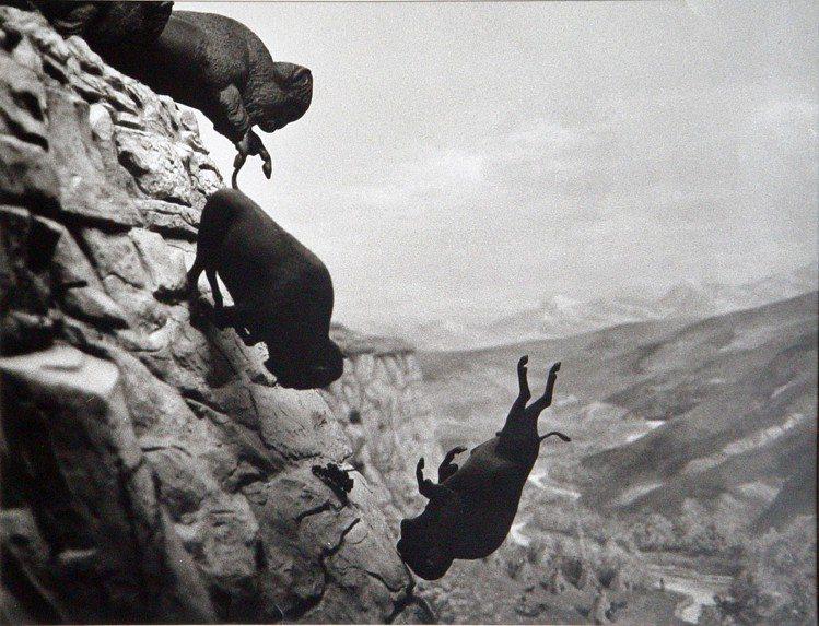 David Wojnarowicz的作品「野牛」。圖/LOEWE提供