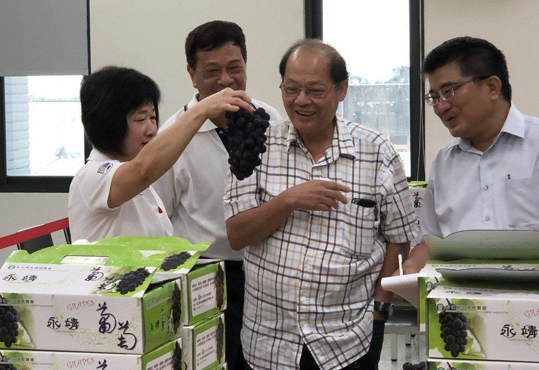 又到葡萄成熟時,彰化縣永靖鄉農會率先舉辦巨峰葡萄評鑑,專家仔細討論葡萄的著色度、...
