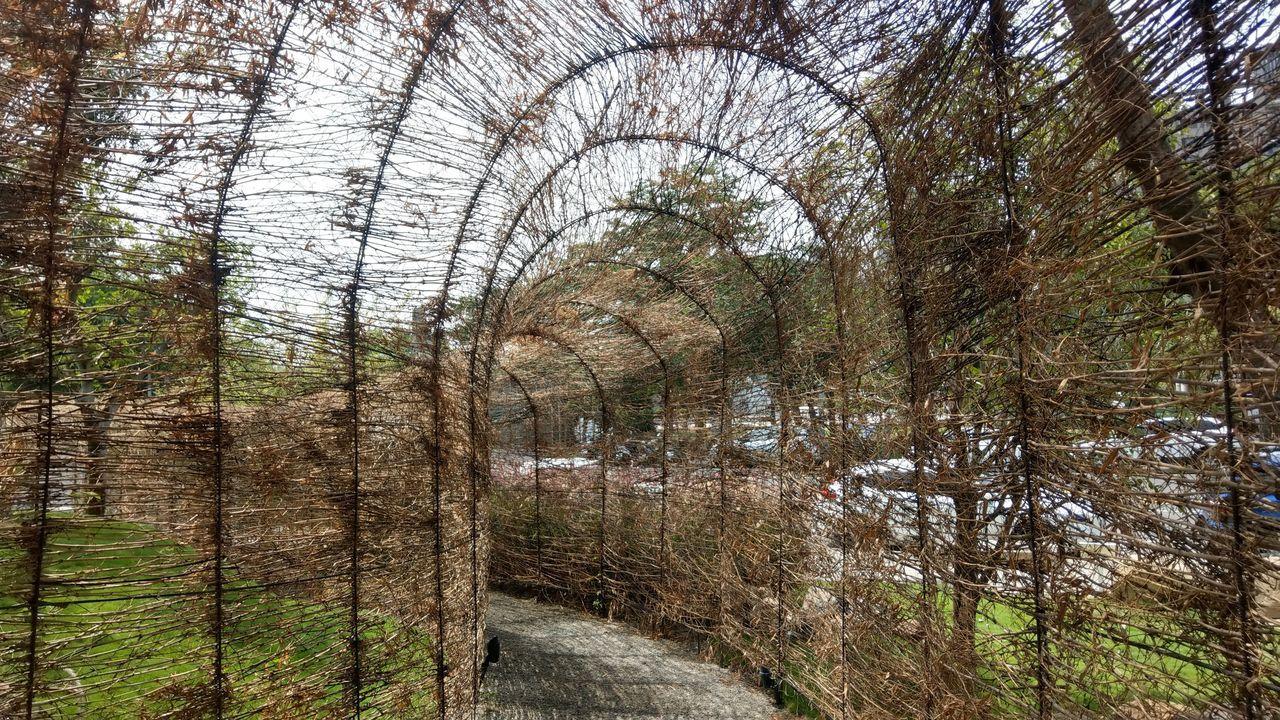 「惠宇PARK23」基地上的竹編通道,隱約看得到外頭景觀,很有特色。記者趙容萱/...