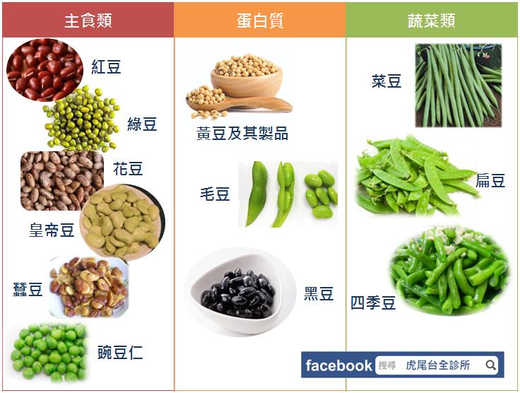 各種豆子的類型。圖取自虎尾台全診所臉書