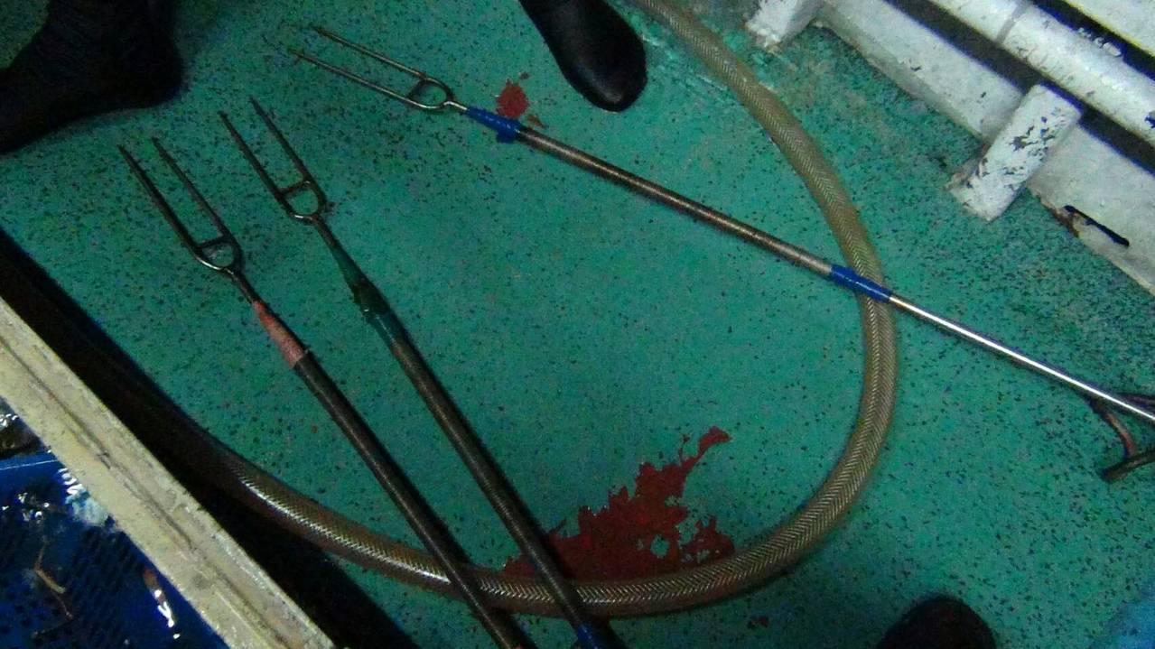 「金吉漁26號」漁船在草里外0.4浬處作業時,遭基隆海巡隊發現「非法潛水捕魚」情...