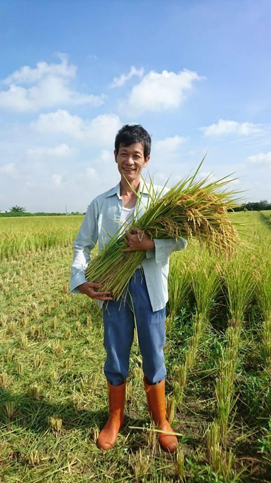 翁坤明夫婦友善大地栽種稻米持續10多年。圖/翁坤明提供
