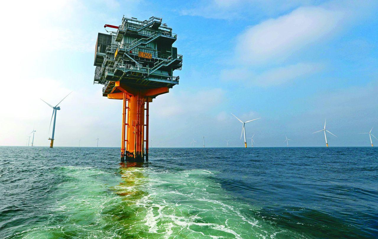 荷蘭海上風力發電機。 (路透)