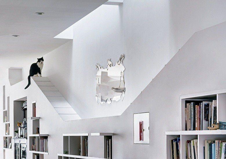 利用書櫃上部作為貓咪天空走道。