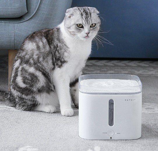小佩寵物智能飲水機,淘寶年中慶狂歡價約台幣1,195元。圖/阿里巴巴提供