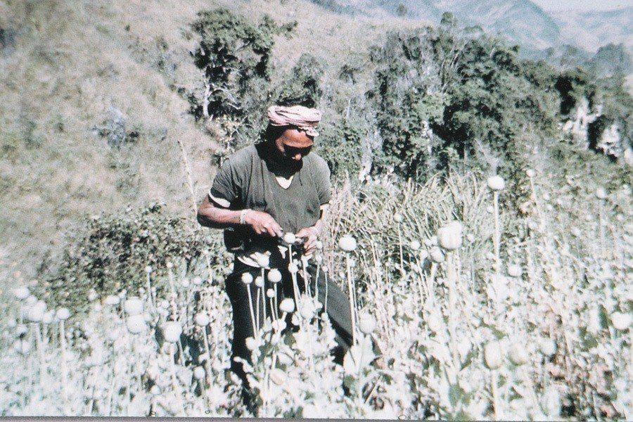 泰北森林生活的少數民族被定位為「破壞森林的非法游耕者」、「罌粟的生產者」...。...