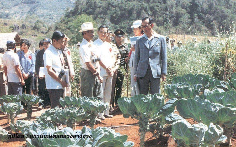 隨著森林種植之後而來的,是一連串的經濟作物試驗與耕地擴張。圖為蒲美蓬視察安康皇家...