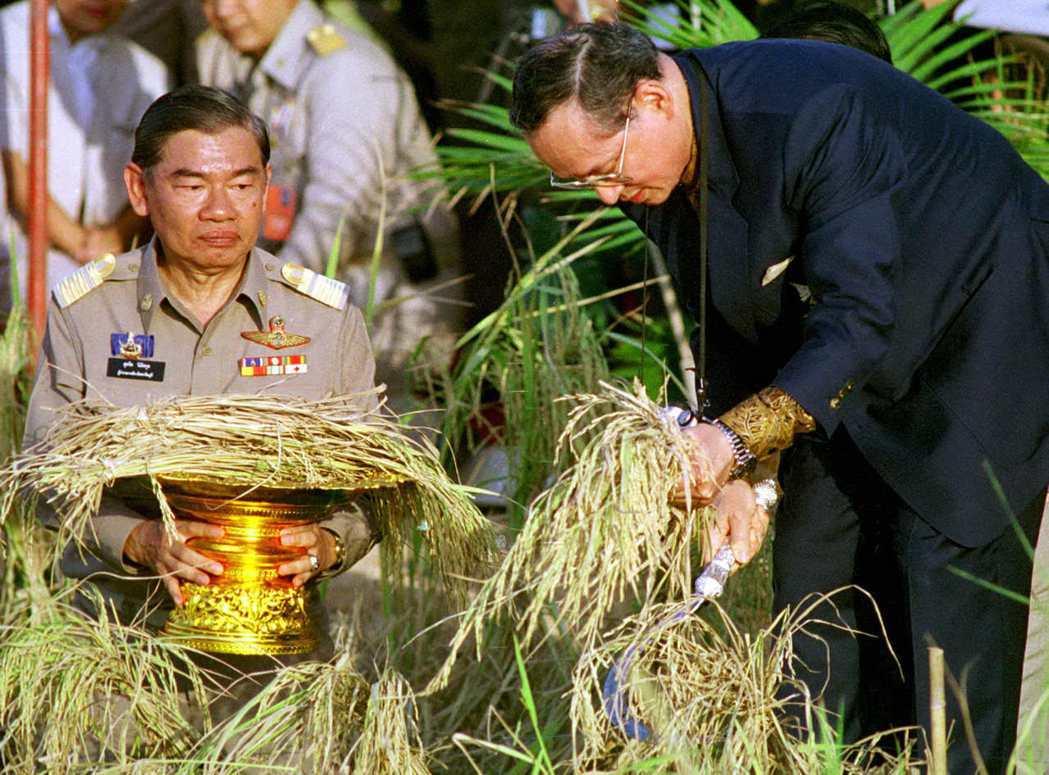 在「國王哲學」的指引下,皇家在不同地區推行與該環境相應的永續農業計畫。圖為蒲美蓬...