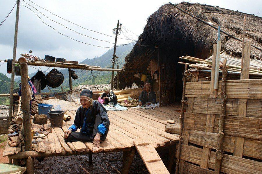 泰國政府與皇家計畫花了近40年的時間,透過植林與法令限制,想讓少數民族定居下來;...