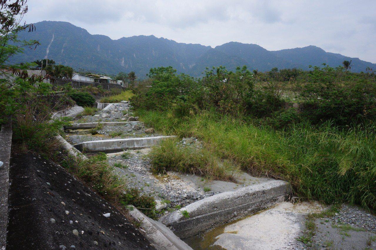 台東縣羊橋溪整治後,兩側的水泥護岸高聳,連人都得手腳並用爬下去,遑論要飲水、覓食...
