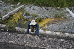 願景/記者實測!河川高聳固床工 爬也爬不上去
