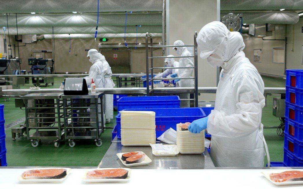 全聯打造生魚片等級冷藏鮭魚。記者沈佩臻/攝影